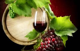 Wine importers Seychelles